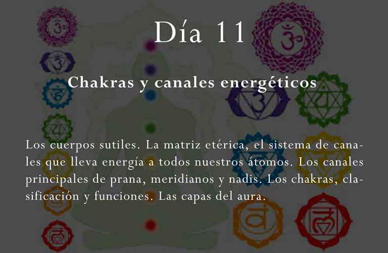 Los cuerpos sutiles. La matriz etérica, el sistema de canales que lleva energía a todos nuestros átomos. Los canales principales de prana, meridianos y nadis. Los chakras, clasificación y funciones. Las capas del aura.
