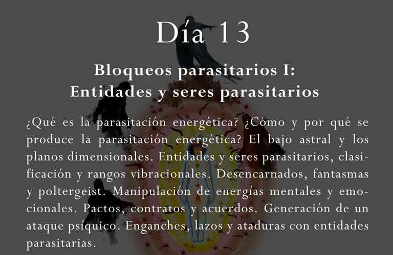 ¿Qué es la parasitación energética? ¿Cómo y por qué se produce la parasitación energética? El bajo astral y los planos dimensionales. Entidades y seres parasitarios, clasificación y rangos vibracionales. Desencarnados, fantasmas y poltergeist. Manipulación de energías mentales y emocionales. Pactos, contratos y acuerdos. Generación de un ataque psíquico. Enganches, lazos y ataduras con entidades parasitarias.