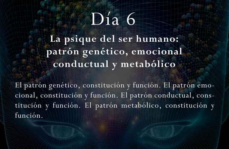 El patrón genético, constitución y función.El patrón emocional, constitución y función. El patrón conductual, constitución y función. El patrón metabólico, constitución y función.